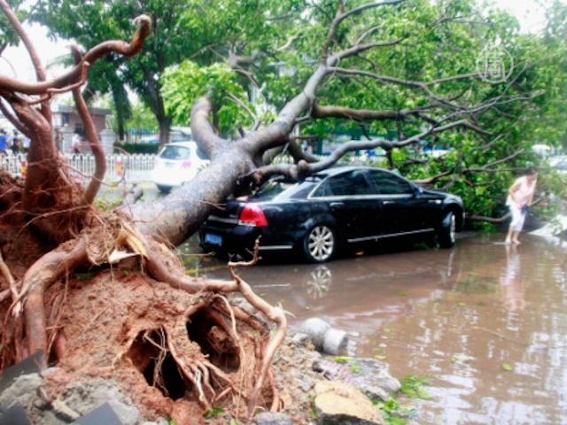 В Китае подсчитывают ущерб после тайфуна «Усаги»