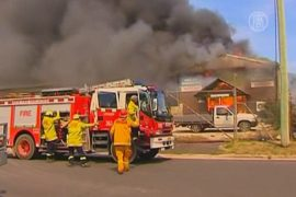 Лесные пожары в Австралии вышли из-под контроля