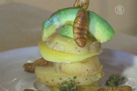 В парижском баре кормят тараканами и скорпионами