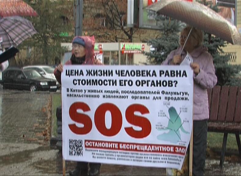 Петербуржцы против черной трансплантологии