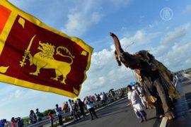 Автостраду открыли шествием слонов