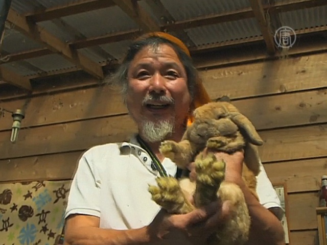 Японец остался в зоне отчуждения ради животных