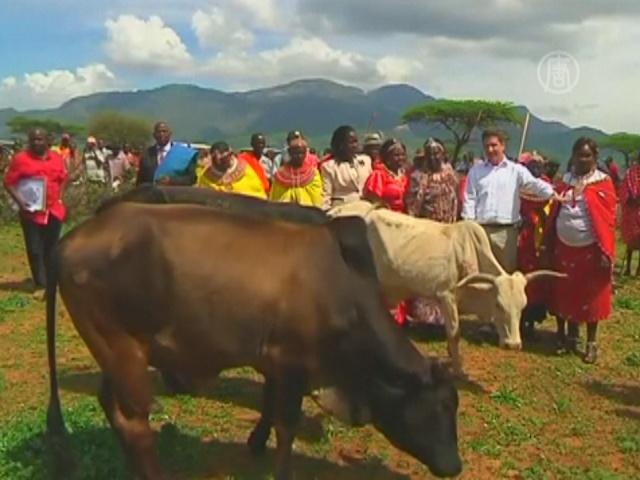 Принцу Джорджу подарили коров и козла