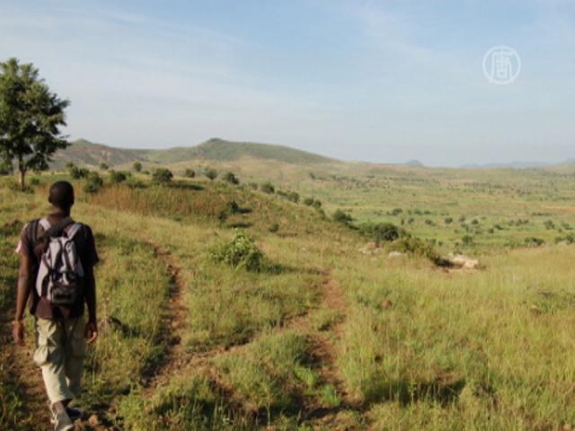 Межплеменная бойня в Нигерии: 37 убитых