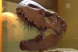 Мексика: все динозавры на одной выставке
