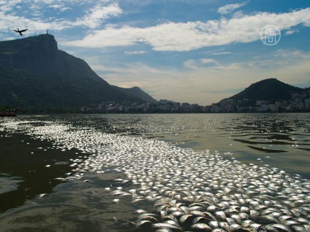 Вода в Рио не готова к Олимпиаде-2016