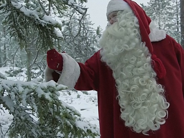 Санта-Клаус занялся защитой лесов