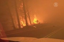 Лесные пожары в Чили вышли из-под контроля