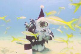 Американский Санта сменил оленей на акваланг