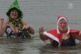 «Берлинские тюлени» совершили заплыв на Рождество