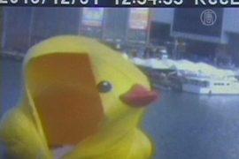 Большая желтая утка взорвалась