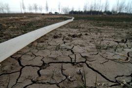 Почва в Китае загрязнена тяжёлыми металлами