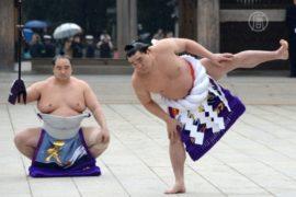 Лучшие борцы сумо встретили Новый год