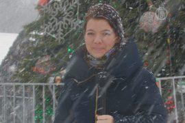 Опрос: как украинцы гуляют на Старый Новый год