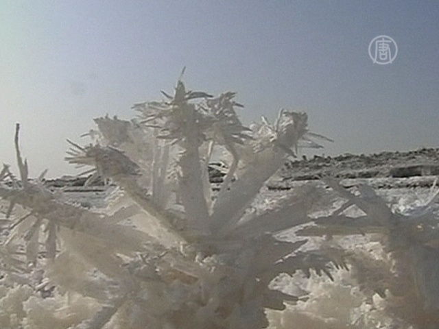 Озеро в Китае покрылось «цветами» из соли