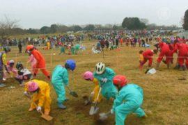 В Японии соревнуются в рытье самой глубокой ямы