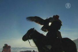 Китайские казахи соревновались в охоте с беркутами