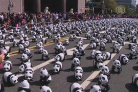 В Тайбэе – нашествие бумажных панд