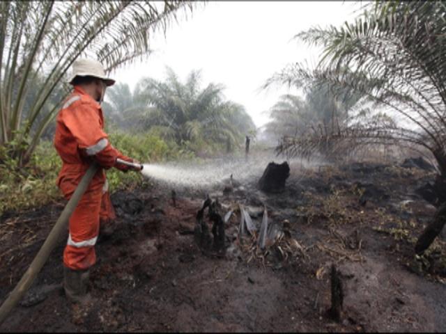 Пожары на Суматре подбираются к домам