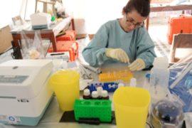 Вирус Эболы в Африке не удаётся усмирить