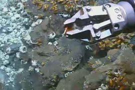 Китайцы нашли гидротермальную руду рядом с Японией
