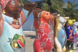 Содружество медведей Бадди приехало в Рио