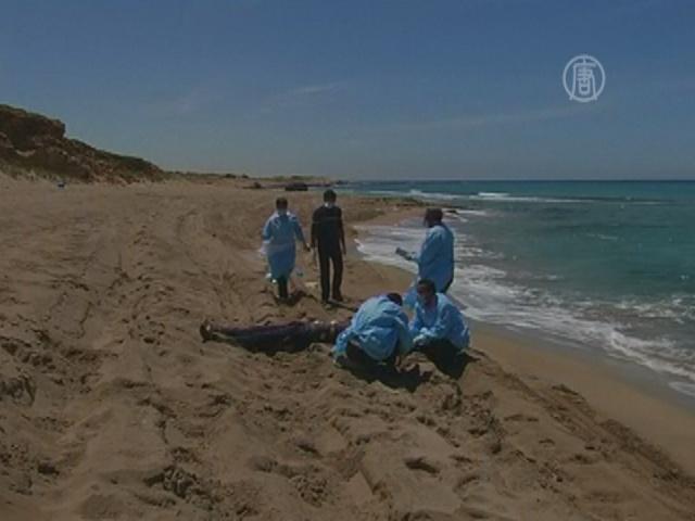 У побережья Ливии затонуло судно с мигрантами