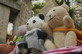 В Японии проводят экскурсии для мягких игрушек