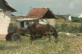 Родные избитого цыгана осуждают жестокое нападение