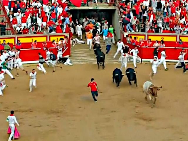 В Памплоне бегают с быками