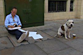 Собака помогла хозяину выйти из нищеты