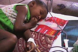 Вспышка энцефалита охватила Западную Бенгалию