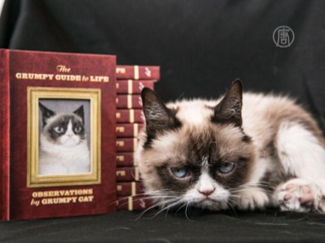 Grumpy Cat рекламирует свою вторую книгу