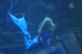 В океанариуме Парижа поселилась русалка