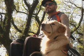Бразилец и собака борются за права инвалидов