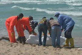 На пляж в Триполи выбросило десятки тел