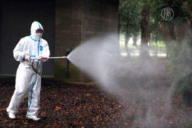 В Токио распространяется лихорадка Денге
