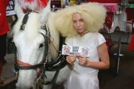 В Нью-Йорке столкнулись модники и природозащитники