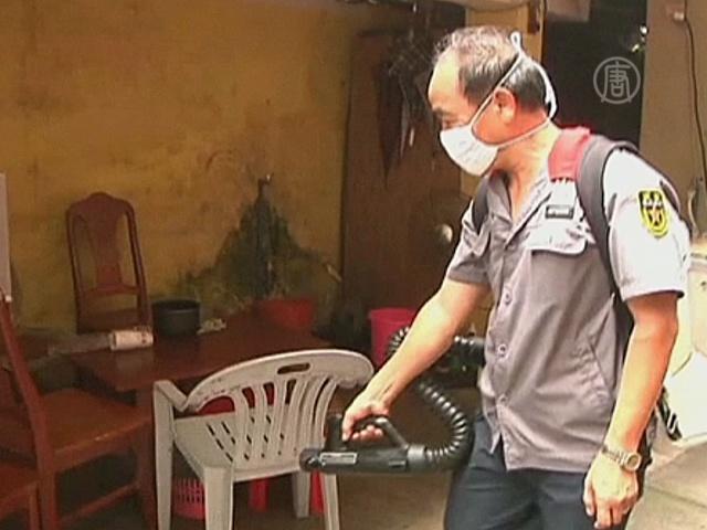 В Китае распространяется лихорадка денге