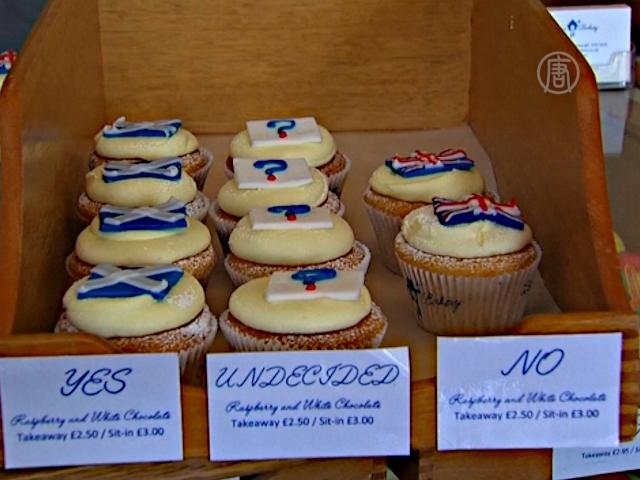 Шотландский пекарь организовал кексовый референдум