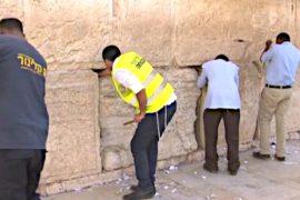 Стену Плача очищают накануне еврейского праздника