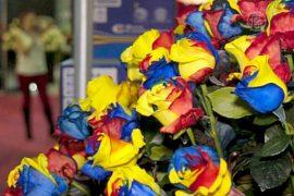 Крупнейшая выставка роз открылась в Эквадоре