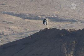 ИГИЛ установило флаг у города Кобани