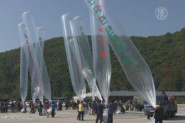 На территорию КНДР запустили шары с листовками