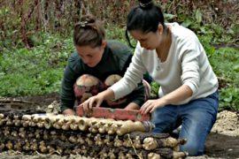 В Колумбии строят дома из бутылок, песка и травы