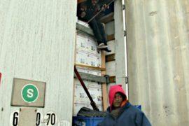 Мигранты прячутся в грузовиках, едущих в Британию