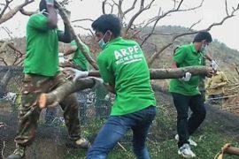 Индийский зоопарк восстанавливают после циклона