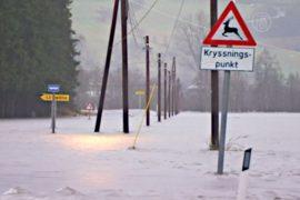 В Норвегии прошел сильнейший дождь за 200 лет