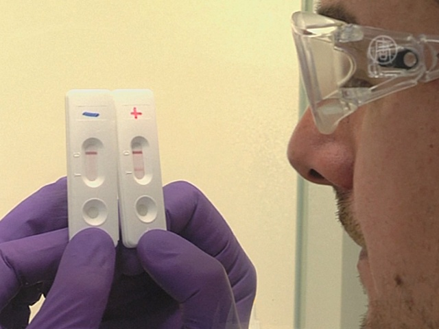Скоростной тест на Эболу разрабатывают во Франции