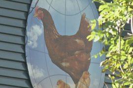 Вспышки H5N8 в Европе могла вызвать миграция птиц